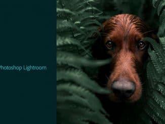 lightroom-trial-1