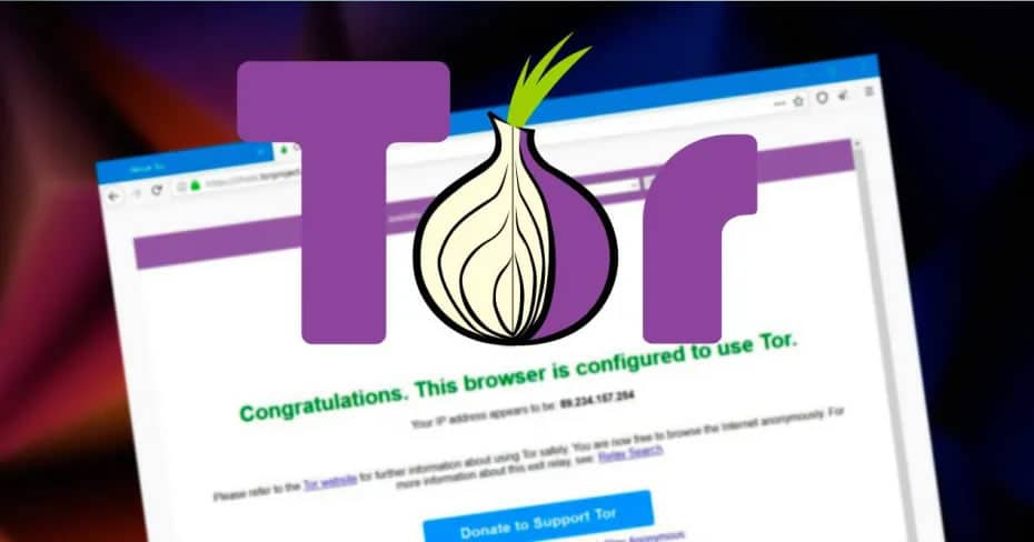 tor browser для ipad 2 гирда
