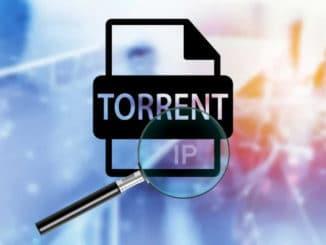 public ip torrent