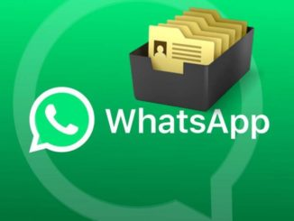 WhatsApp: How to Find Shared files with Contact or Group