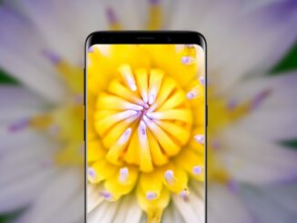 Use the Macro Camera on Android Phones