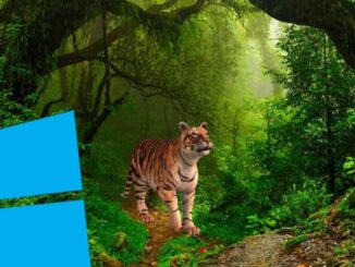 Add 3D Objects and Animated Text to an Image in Windows 10