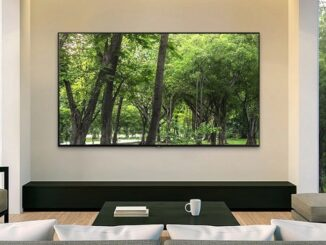 Best Smart TVs to Use as a Picture or Photo Frame