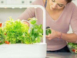 Create a Smart Kitchen