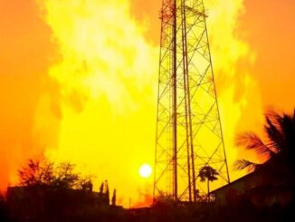 Mobile Networks to Detect Forest Fires