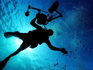 Best Accessories for Diving or Snorkeling with Your Mobile