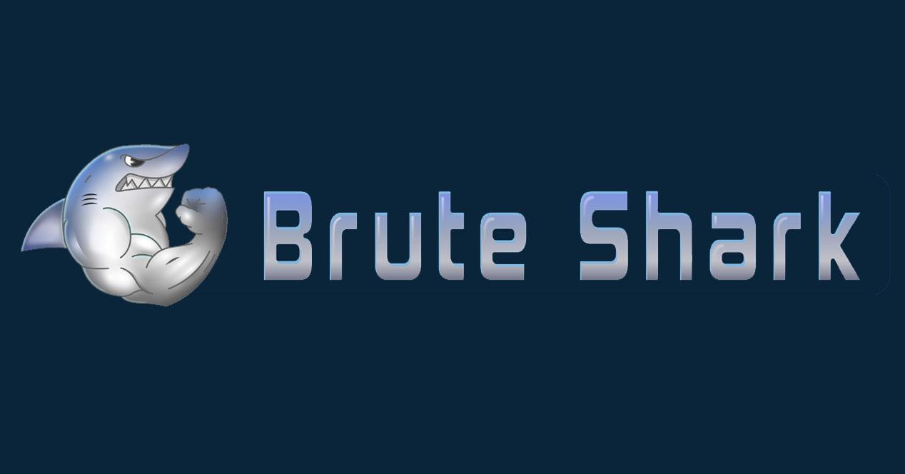 BruteShark
