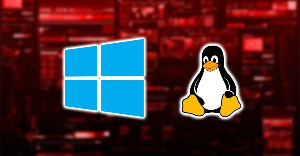 vWindows and Linux Tie Extremely Serious Security Flaws